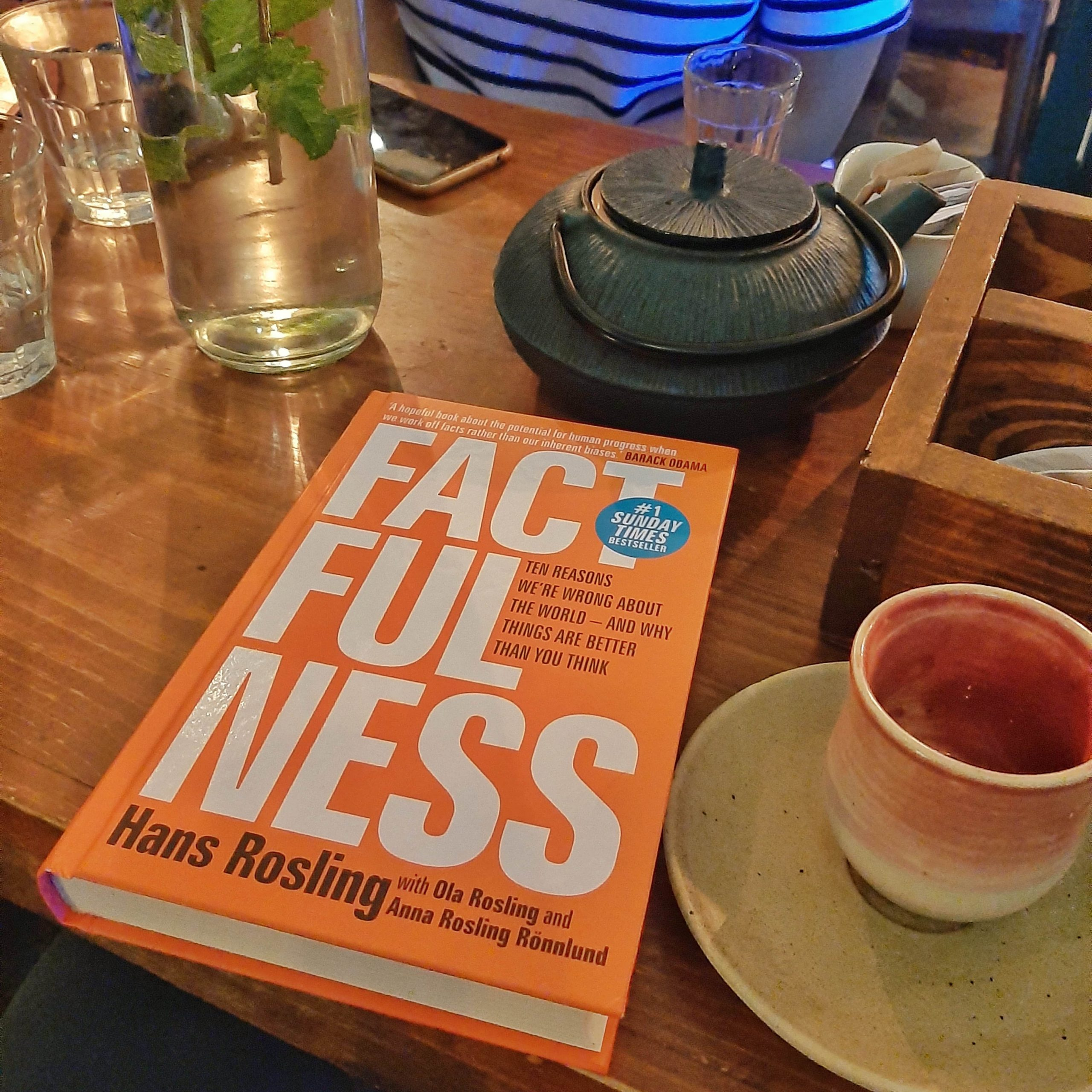 Book Recommendation: Factfulness